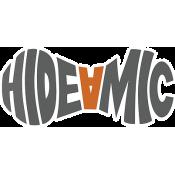 Hide A Mic (14)